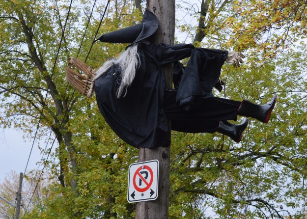 She's back! This broomstick-riding witch crashes into this utility pole on First Avenue at Trent Avenue in Welland every year around this time.  She's become a fixture of the Halloween season  in this neighbourhood and something of a local landmark. The no parking  sign adds a twist of irony to  the situation. (Photo by Joe Barkovich)