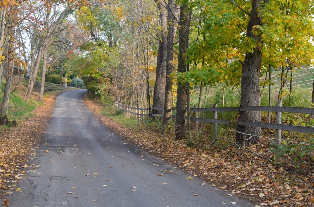 One of the joys of driving along a winding country road like this one in rural Pelham: anticipating what lies beyond the bend. The roadside fence adds to the scene's allure. (Photo by Joe Barkovich)