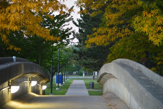 Pedestrian bridge, Niagara College campus, September 2014.