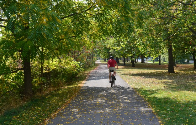 Cyclist on canal trail near Notre Dame College School, October 2014.