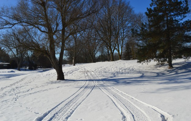 Tracks in Welland's  seasonal jewel, Chippawa Park,  viewed from Manor Road. (Photo by Joe Barkovich)