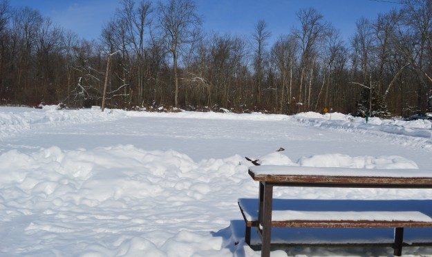 This just might be Welland's best-kept pond hockey secret. The rink is at the end of Montgomery Road and on a day like today, it looked spectacular. A recreation jewel for this neighbourhood.(Photo by Joe Barkovich)