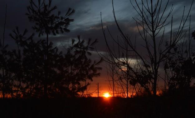 Sun rising.