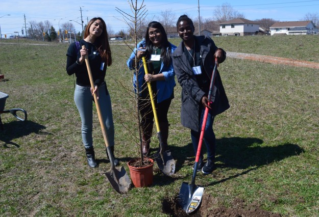Niagara College students volunteered to work as Sustainability Ambassadors at today's Earth Day and Arbor Day celebration at the Welland campus. From left, Michelle Fowler, Sadiyya Sultana and Assali Essozinam, three Sustainability Ambassadors, put shovels in the ground  to dig a hole for a tamarack tree.