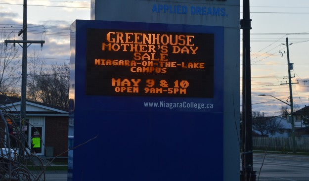 Here's a timely reminder. Niagara College's greenhouse is hosting its annual plant sale in May. Just in time for a special day. (Photo by Joe Barkovich. Gadabout Gardener is a recurring feature on the blog, premiering today)