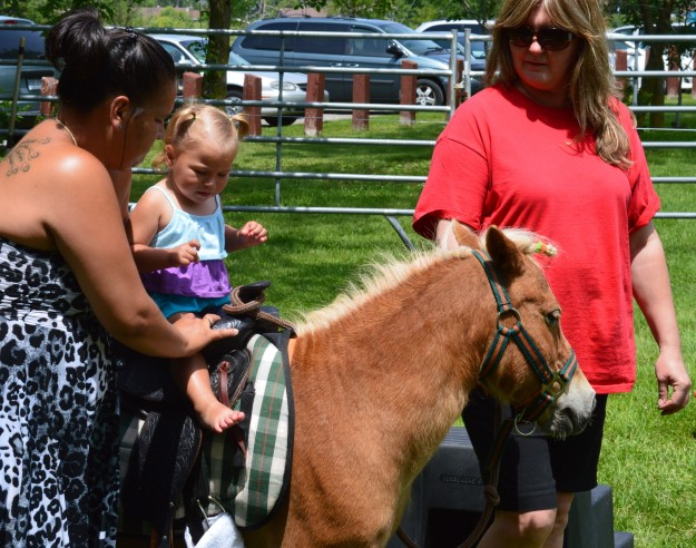 Bam Bam the pony was popular with the small fry set at the pony rides,