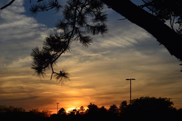 Parking lot sunset, Friday evening, Welland Y. (Photo by Joe Barkovich)
