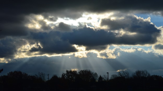 The payoff of taking a morning walk on a blustery, unsettled morning such as today's. (Photo by Joe Barkovich)