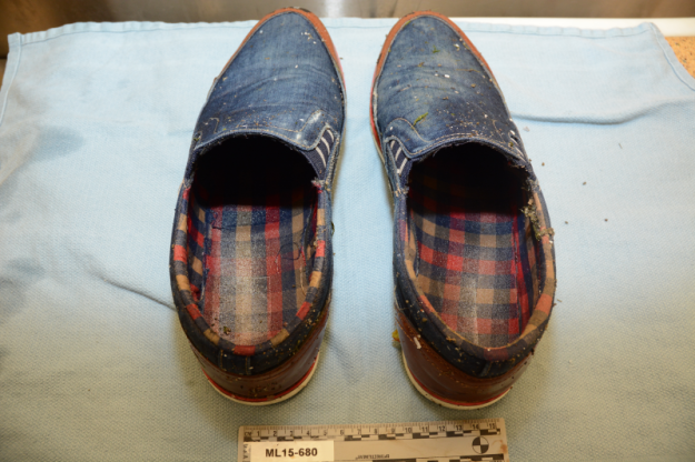 blue shoes.png