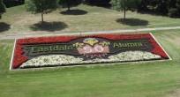 Eastdale (1)